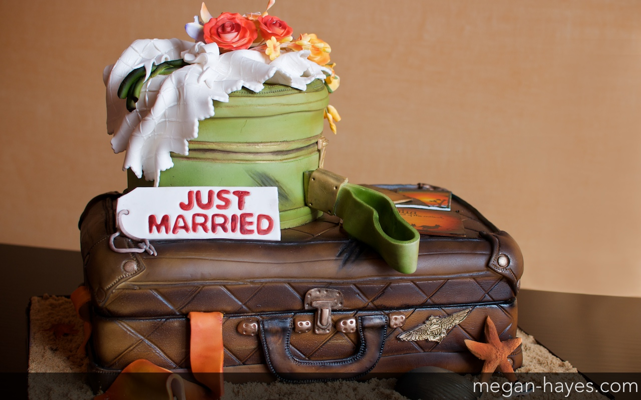 Just Married A Vintage Luggage Cake Megan Hayes Photography