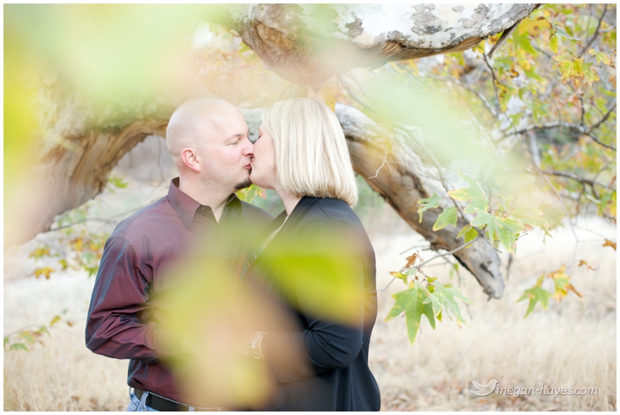 santa clarita engagement photographer
