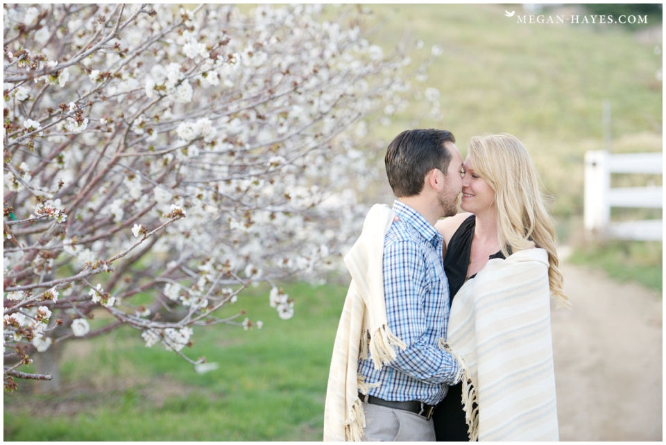 Cherry Farm Engagement