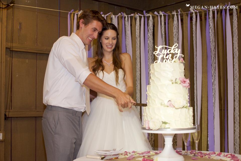 Camarillo Ranch Wedding Photos