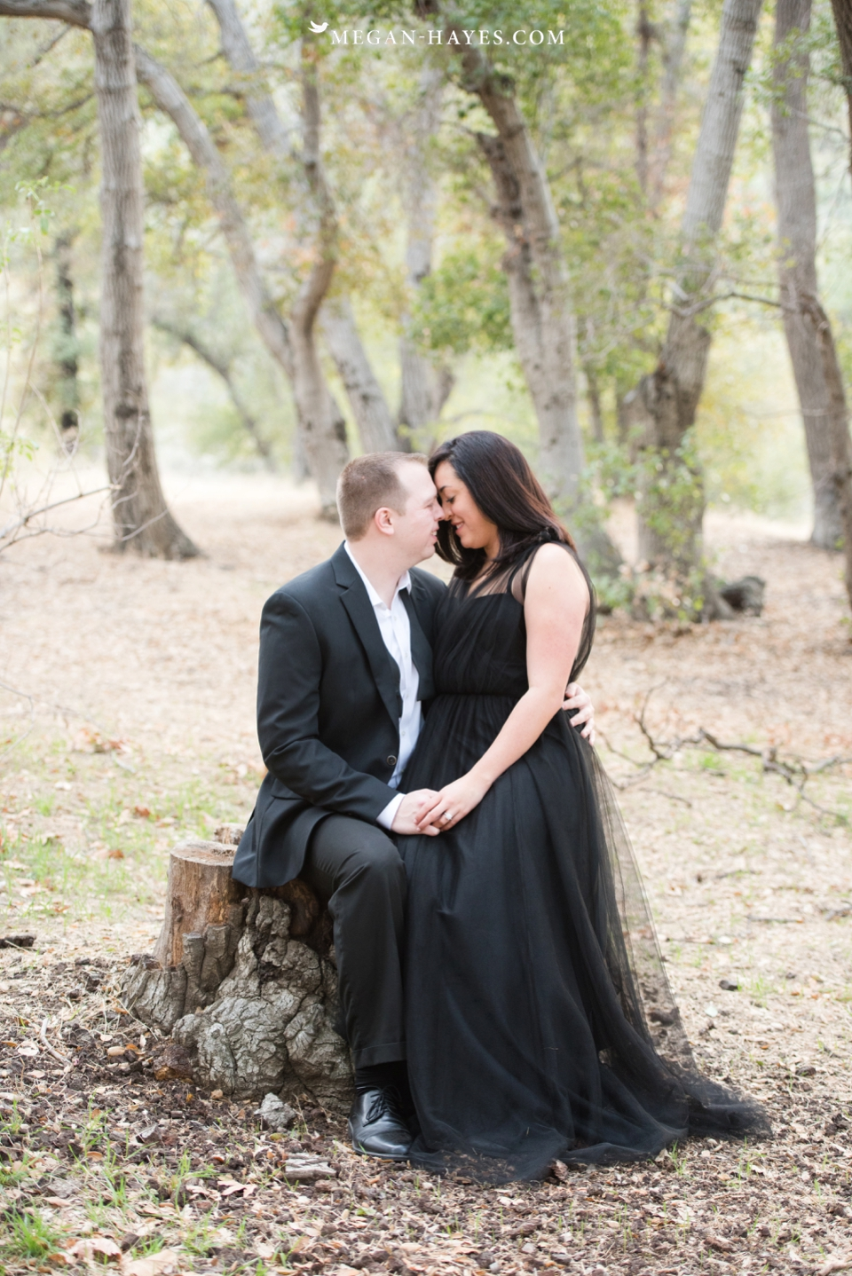 Santa Clarita Engagement Session