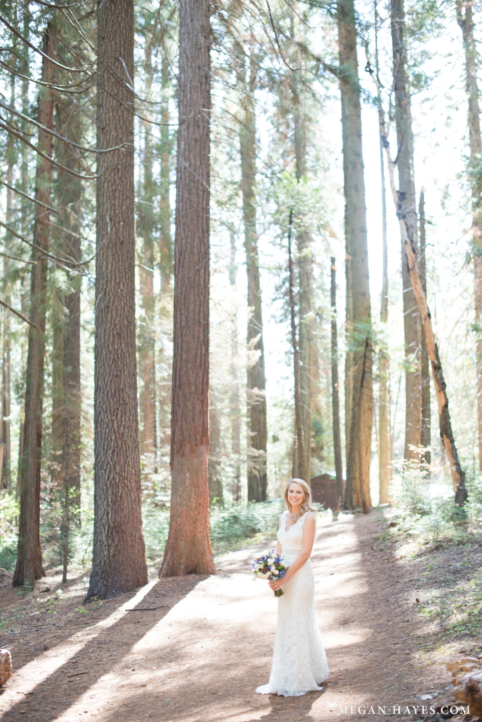 Paradise Springs Wedding Oakhurst CA